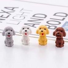 Dog Eraser