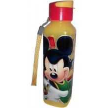Water Bottle Mickey & Minnie