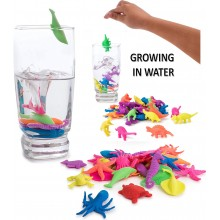Magic Grow in Water Toy Animal